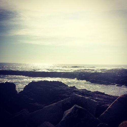 Pasandolaaa ? Volatil Playa Bri  Instamoment instaiquique instachile chile iquique peninsula cavancha moment followme follow