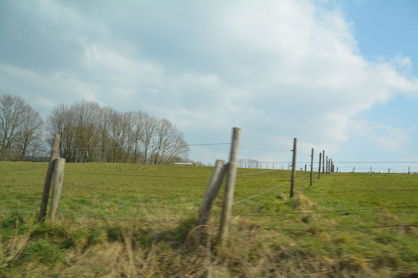 Beauty In Nature Cloud Cloud - Sky Cloudy Day Fence Field Grass Grassy Landscape Nature Non-urban Scene Rural Scene Scenics Sky Tranquil Scene Tranquility Tree Wood - Material Wooden Post