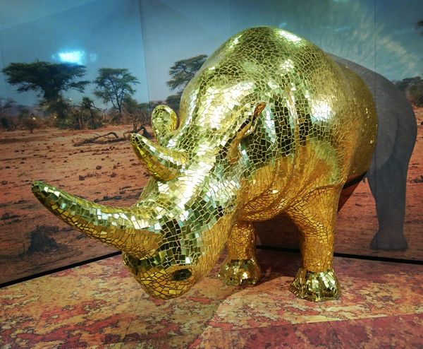 Animal Themes Domestic Animals Animals In The Wild Zoology One Animal Animal Themes Animals In The Wild Zoology Animal No People Male Animal Domestic Animals Gold Golden Shining Decoration Home Interior Cersaie 2016 Cersaie Rinoceronte Rino Rinocerontes