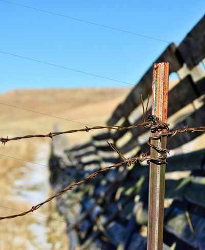 Barbed wire tied off to snow fence Planks Wood - Material Metal Outdoors Shadows Grass Eye Level View Focus On Foreground Blurred Background Fences South Of Manville Wyoming Barbed Wire Sky Close-up