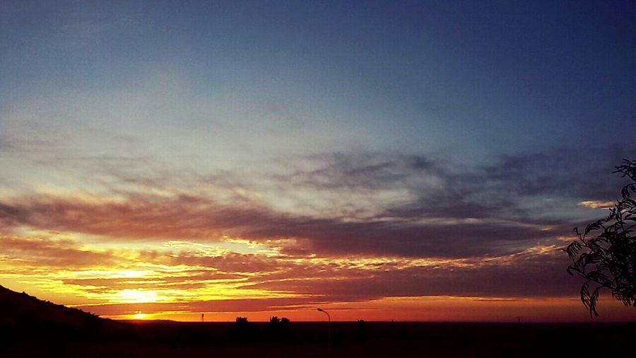 Beautiful Sky Beautiful Sky_collection Desert Beauty Sunrise Palm Trees Sky And Clods Algeria Adrar Have A Nice Day♥
