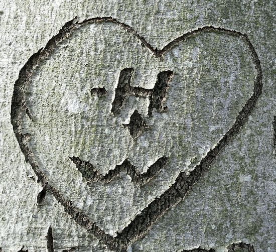 Valentine's Day  Longlastinglove Love Close-up Outdoors No People Treebark carved in tree Carved Heart In Treebark Two Letters In Heart