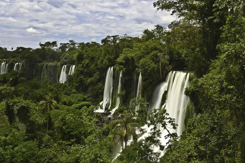 Brasil ♥ Iguazu National Park IguazuFalls Nature Nature Photography Tree Trees Beauty In Nature Brasil Cloud - Sky Day Falling Water Flowing Flowing Water Forest Forest Photography Green Color Iguazu Iguazu Falls Iguazu Natural Land Long Exposure Motion Nature Nature Brazil Nature_collection No People Outdoors Plant Rainforest Scenics - Nature Sky Tree Water Waterfall