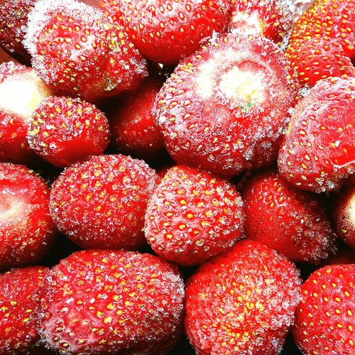 Frozen ripe red strawberry closeup Strawberry Frozen Frozen Food Snow Berries Fruit Summertime Ripe Food Vegan Vegetarian Food Absrtact Top View Organic Organic Food Red Backgrounds Full Frame Close-up Sweet Food Food And Drink Dessert Berry Fruit Summer Exploratorium