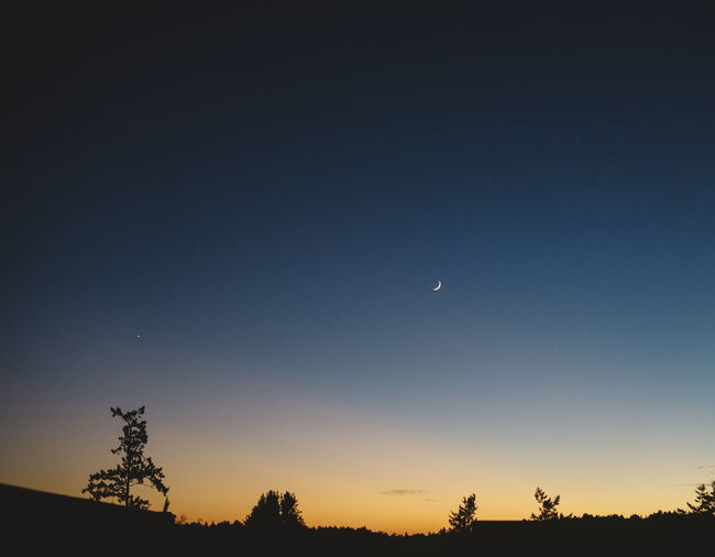 sliver of a moon Sky Moon Beauty In Nature Scenics - Nature Tranquility Silhouette Crescent Tranquil Scene Tree Night Plant Space Low Angle View Half Moon Nature No People Astronomy Copy Space Clear Sky Sunset Outdoors Dark Eclipse Planetary Moon