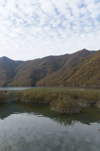autumn landscape at Janggye Tourism Place in Okcheon, Chungbuk, South Korea Autumn Autumn River Janggye Okcheon Riverside Autumn Riverside Beauty In Nature Day Lake Landscape Mountain Mountain Range Nature No People Outdoors Reflection River Riverside Photography Scenics Sky Tranquil Scene Tranquility Water