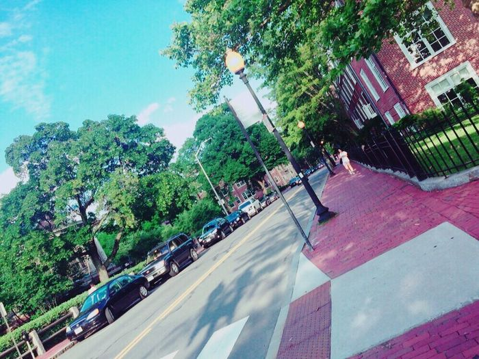 America Boston Harvard Harvardsquare