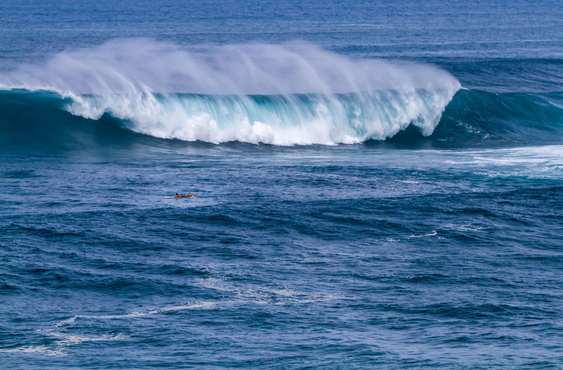 Waimea bay surfer paddles out for a wave, north shore Oahu Hawaii Big Waves Oahu, Hawaii Surf Surfer Beach Beauty In Nature Crashing Waves  Day Motion Nature No People North Shore Ocean Outdoors Scenics Sea Sky Spray Surfing Travel Destinations Waimea Bay Water Waterfront Wave Wind