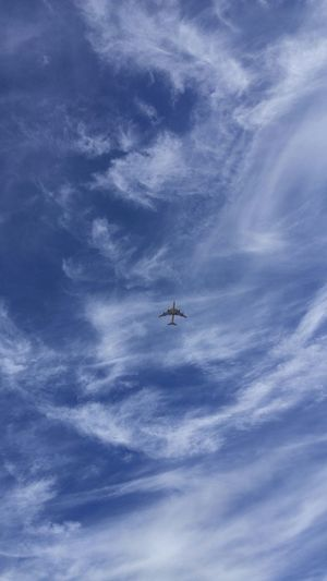 Airplane Blue Skys Close-up Flying Low Angle View No People Plane In Clouds Sky Skyline Wispy Clouds