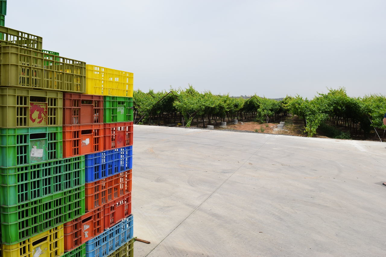 Stack Of Multi Colored Crates On Road By Vineyard Against Clear Sky