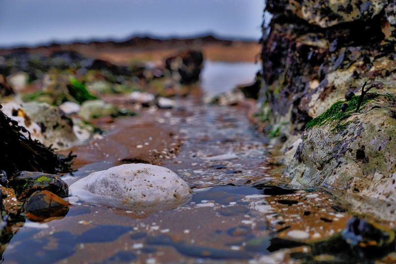 Close-up of rocks in sea