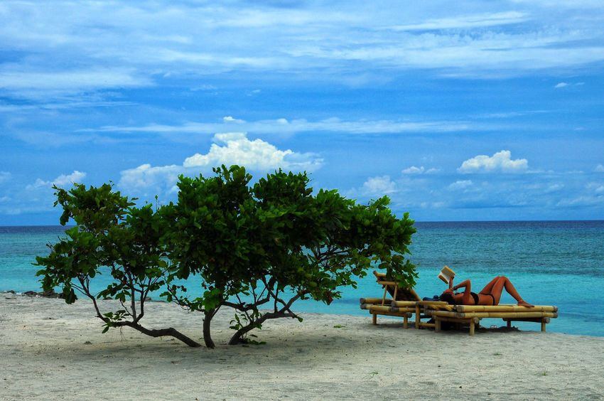 tree sunbathing Beach Beauty In Nature Cloud - Sky Day EyeEm Selects EyeEmNewHere Horizon Over Water Idyllic Nature No People Outdoors Relaxation Sand Scenics Sea Sky Sommergefühle Summer Sunbathing Tranquil Scene Tranquility Tree Vacations Water