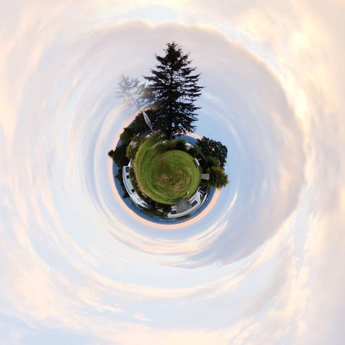 Tree Plant Sky Nature Cloud - Sky Fish-eye Lens No People Circle Geometric Shape Shape Growth Outdoors Beauty In Nature Water Sunset Planet Earth Day Space