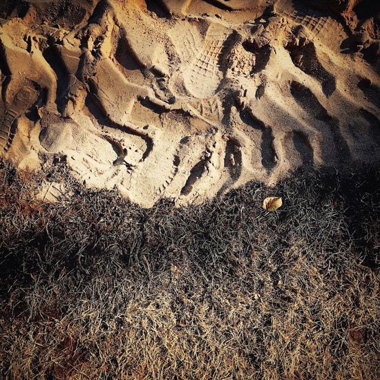 The traces are visible on the slopes and traces of the invisible grass. Outdoors Grass Traces In The Sand Park Green Brown Sand