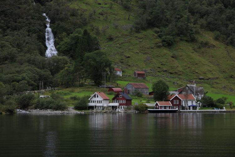 Houses by lake and buildings against trees