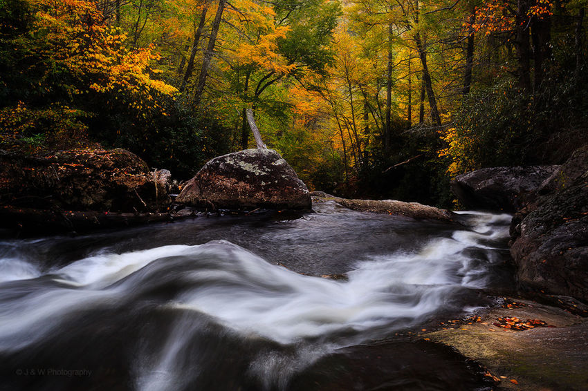 "【Flow into Autumn】We haven't posted any new photos for awhile and now it is time to update with new photos. We were just back from our scheduled southeast Fall colors trip and are slowly post-processing images. The first patch of images were from our 10 day trip to the Blue Ridge south of Asheville of North Carolina and the Great Smoky Mountains Nation Park during mid to late October. Out first stop was the Cullasaja Gorge near Highlands of western North Carolina where several decent waterfalls are located. It was slightly past the peak colors when we arrived there but still good enough for great photos. Although it was our first time to be there, we could immediately tell upon arrival that it is would be a very photogenic place to produce great images for us. After spent about 1 hour photographing Dry Falls, we descended into the steep creek somewhere downstream for some intimate photo opportunities. All was so pleasant and refreshing to be at the bottom of the Gorge with brilliant Fall colors, running step-wise cascades, and the tranquility and solitude we had to ourselves. Normally we take stream/creek photos in upstream direction, this time we shot the subject downstream to best reflect our interpretation of ""flow into Fall"" at the scene. Thanks for stopping by and hope you enjoy! Landscape Nature Fog Sunset Dusk Trees Cades Cove Great Smoky Mountains National Park"