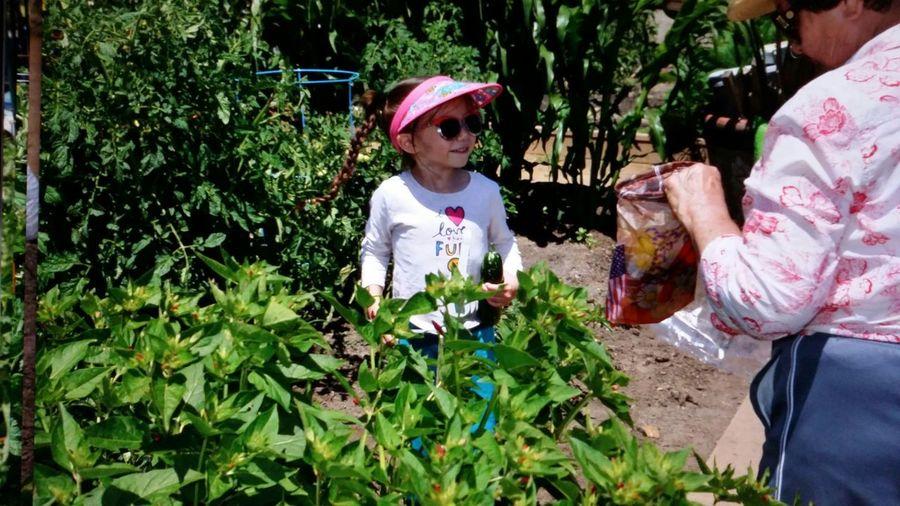 My great grandma's secret garden Check This Out My Secret Garden 2015 San Jose California Secret Garden Love My Grandchildren Eye4photography