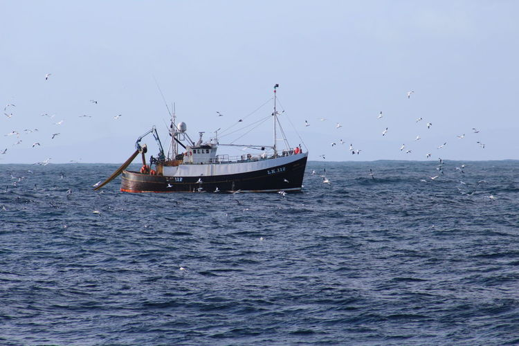 Fishing Net TR2 Fish Fishing Fishing Boat North Sea Sea Tr1 Trawler Trawlermen
