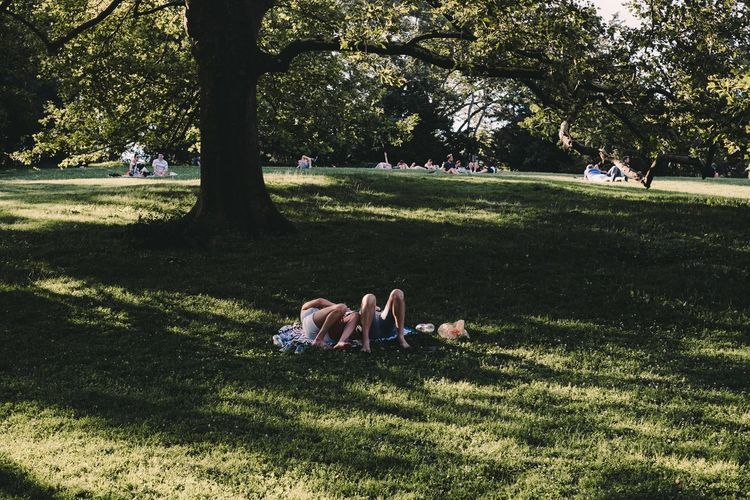 Central Park New York USA Wanderlust Grass Lying Down Nature Outdoors Real People Relaxation Sunlight Togetherness Travel Destinations Tree Be. Ready.
