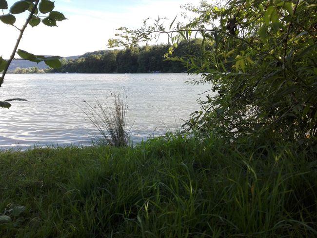 نهر الراين المانيا
