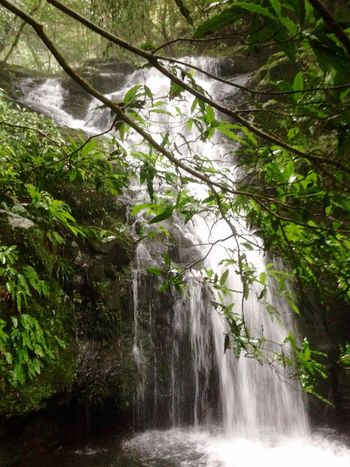 For I Grew Up The Mountains Beauty In Nature Mountains And Valleys Chasing Waterfalls Waterfall #water #landscape #nature #beautiful Japan Scenery In Nagasaki, Perfecture