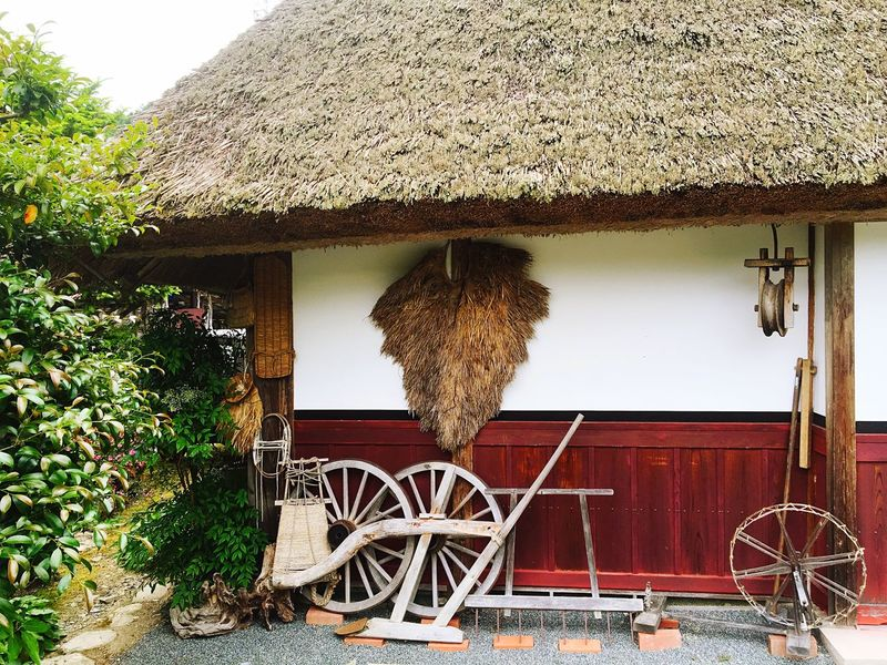 Thatched Roof Built Structure Architecture No People Building Exterior Outdoors Day Tree Nature Animal Themes かやぶきの里 茅葺屋根 京都