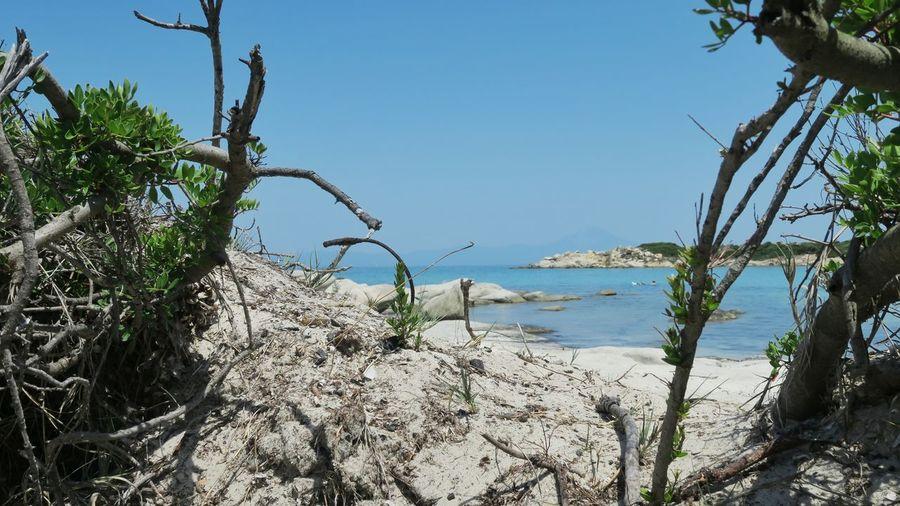 Seascape of a rocky bay at karidi beach, greece Greece Rocks Seascape Blue Water Beach Karidi Beach Tree Water Sea Clear Sky Beach Marram Grass Sand Blue Water's Edge