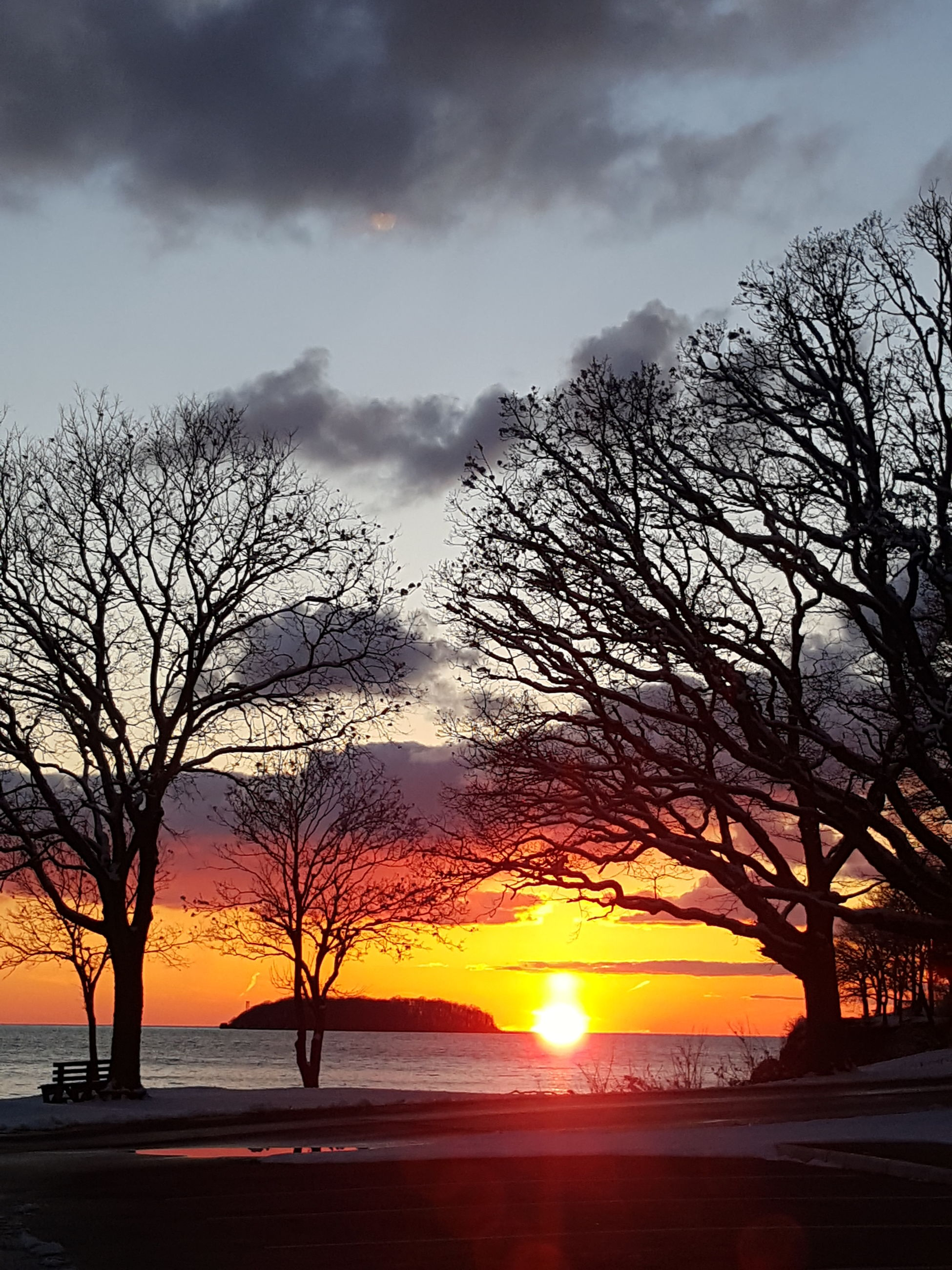 sunset, bare tree, tree, sky, branch, orange color, cloud - sky, weather, nature, winter, cold temperature, silhouette, building exterior, season, beauty in nature, scenics, built structure, snow, cloudy, tranquility