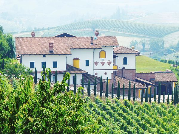 Barolo City Italy🇮🇹 Wine Country Colour Of Life Winegrapes Taking You On My Journey 😎 Details Of My Life Color Palette Fine Art Photograhy No People Warm Colors Outdoor Photography Barolo Wine Fine Art Nature Grapes 🍇 Balcony Shot Winery Wine Bottles Wine Tasting Green Color