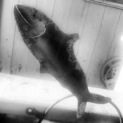 Fish in Bronze . Sculpture Blackandwhite Art Instahub Instadaily Updaily All_shots Native Art Salmon Sculptures Metalwork Metalwork Textures Black And White Collection  Black & White Black And White Texture