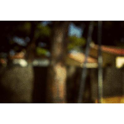#abstarct #hyères #sud #cotedazur #blur