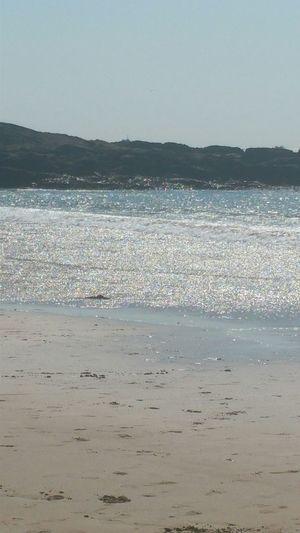 Sunlit Beach EyeEm Best Shots Eye4photography