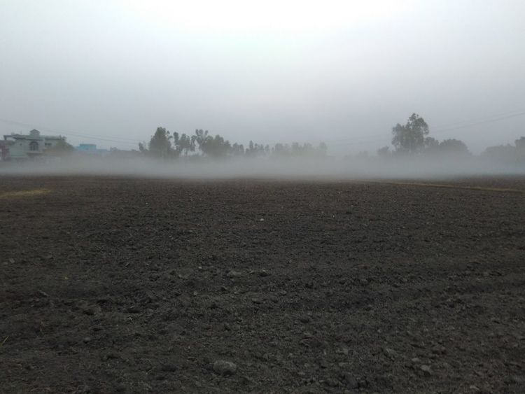 Agriculture Beauty In Nature Day Field Hazy  Idyllic Landscape Mist Nature No People Outdoors Plough Rural Scene Scenics Sky Tranquil Scene Tranquility Tree Weather EyeEmNewHere Discover Berlin