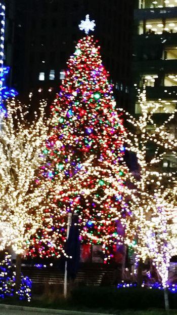 Christmas tree @ Campus Martius Park , Detroit, MI