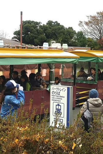 Streetphotography Japanstreetphotography Showa Kinen Park Park Train Train Train Ride Japanautumn2016 Japanautumn Japannov2016 Japan