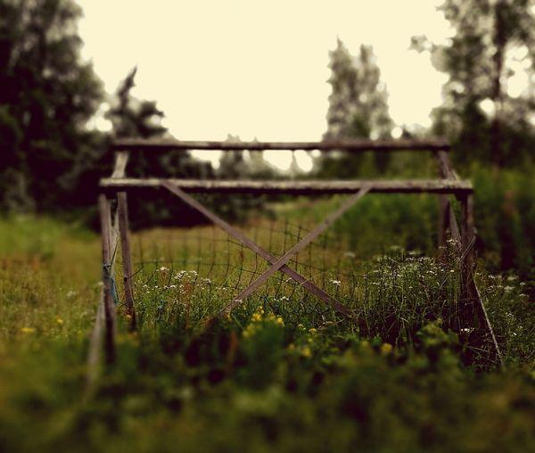 Fence on grassy field
