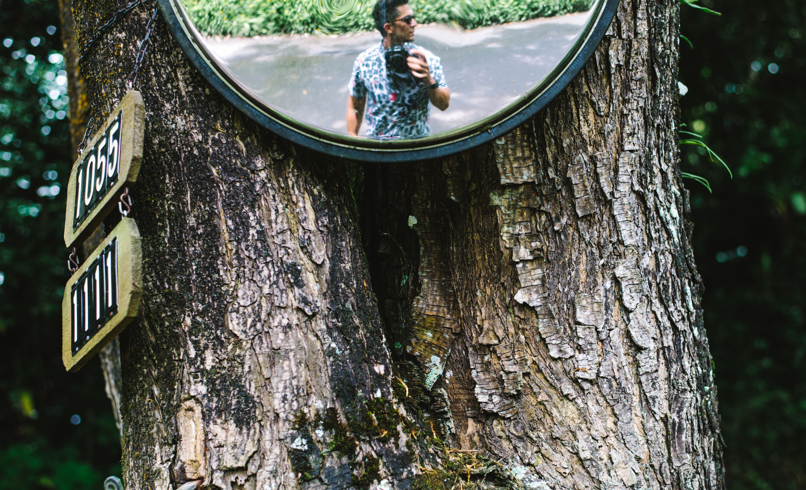 tree trunk, tree, real people, leisure activity, one person, day, childhood, outdoors, lifestyles, sitting, nature, rear view, growth, women, close-up, people