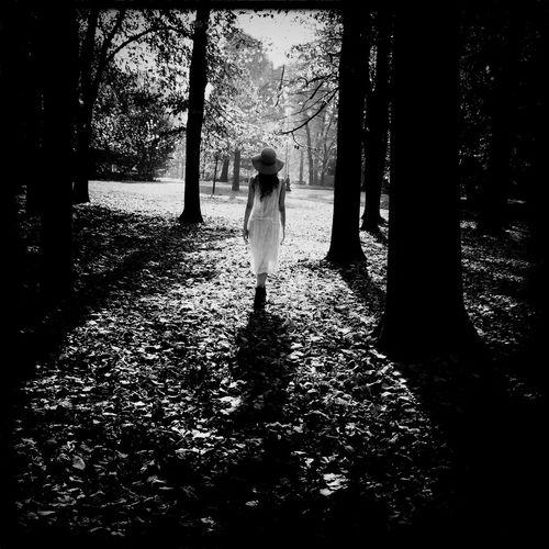 ___Walk___ Tree