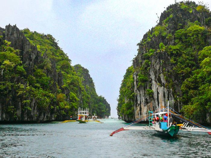 Vacations ElnidoPalawan2017 Water Nature Beach Tree Palawan Philippines ElNidoIslands Biglagoon Ilovephotography Ilovetravel Travel Destinations Perspectives On Nature