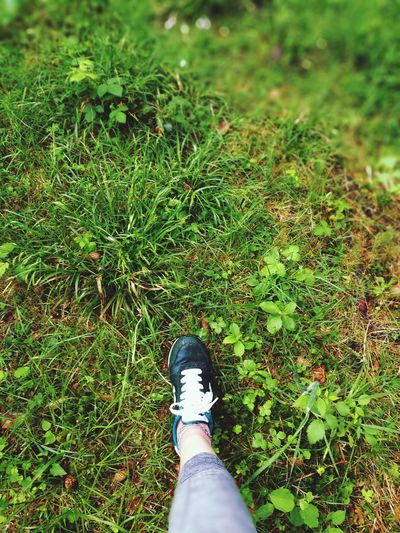 Low Section Grass One Person Shoe Human Leg Day Outdoors Nature Running Running Route Running Free Runningshot Out Of The Box