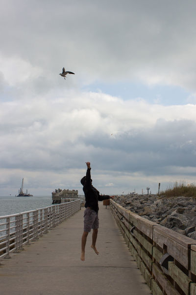 Tossing a cracker Adult Feeding The Birds Fishing Pier Full Length In Air Jetty Park Jumping One Person Outdoors Sea Seagull Sky Throwing  Young Man