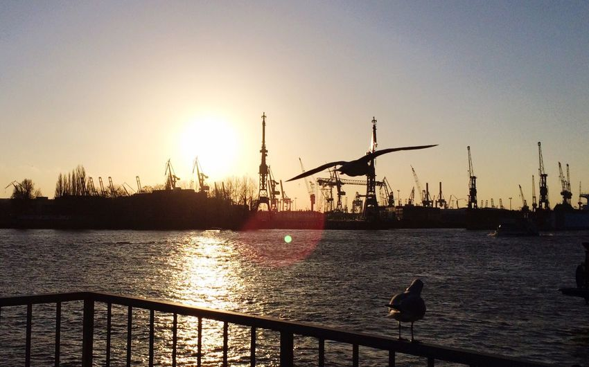 Cranes at harbor during sunset
