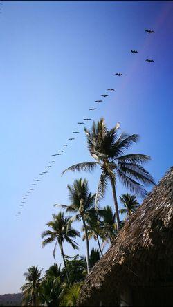 Playa El Zonte. Playa El Zonte El Salvador Impresionante