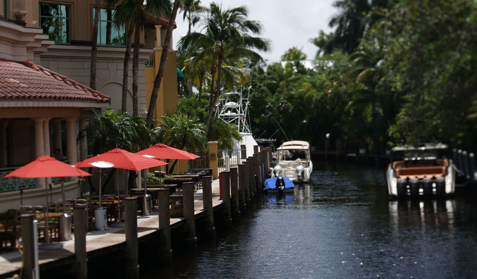 Boating Fort Lauderdale  Architecture Building Exterior Built Structure Day Florida Nature No People Outdoors Sky Tree Water Waterfront
