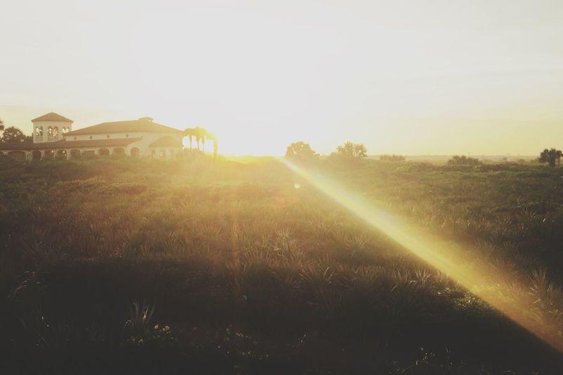 Sunset Enjoying The Sun VSCO Cam Gimme The Light