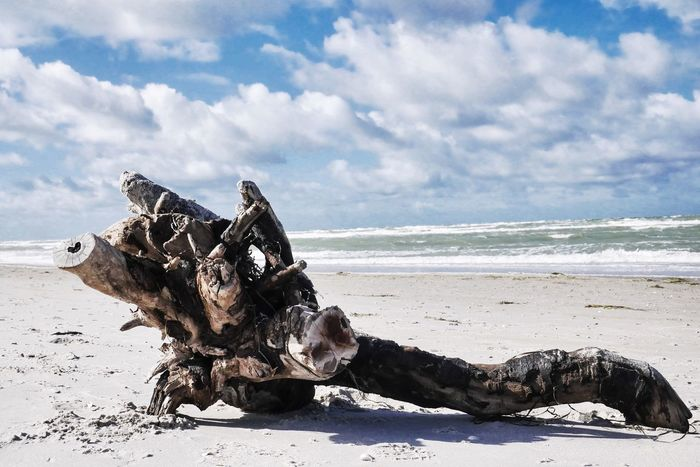 Sculpture Beach Sea Land Sky Cloud - Sky Water Sand Nature Beauty In Nature Day Horizon Over Water Tranquility Sunlight Scenics - Nature Tranquil Scene No People Horizon Driftwood Non-urban Scene Outdoors