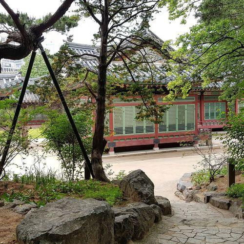 Deoksugung Palace Palace Architecture Seoul Architecture Architecture Korean History Korean Culture Tripwithson2017 Tripwithsonmay2017 Seoul South Korea