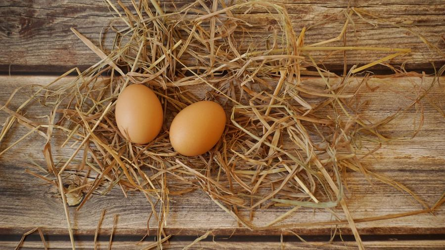 Eggs with straw on wooden background Wood Nature Food Still Life Home Farm Healthy Egg Food And Drink Plant Brown Chickens Hay Chick Fragility Beginnings Straw Freshness Healthy Eating No People Raw Food Wellbeing Vulnerability  High Angle View Animal Egg Animal Nest Vulnerability  Wood - Material Indoors