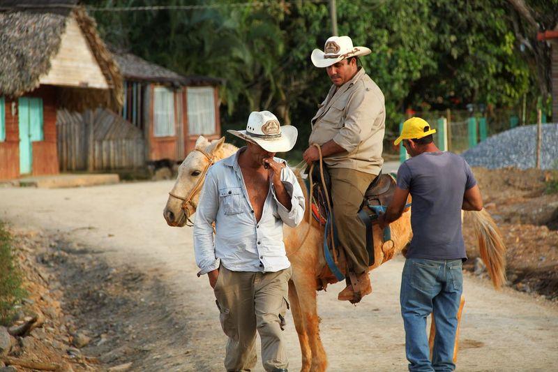 Cuba Cuban Style Viñales Viñales Valley, Cuba Men Clothing People Walking Full Length Rural Scene Nature 17.62° My Best Photo