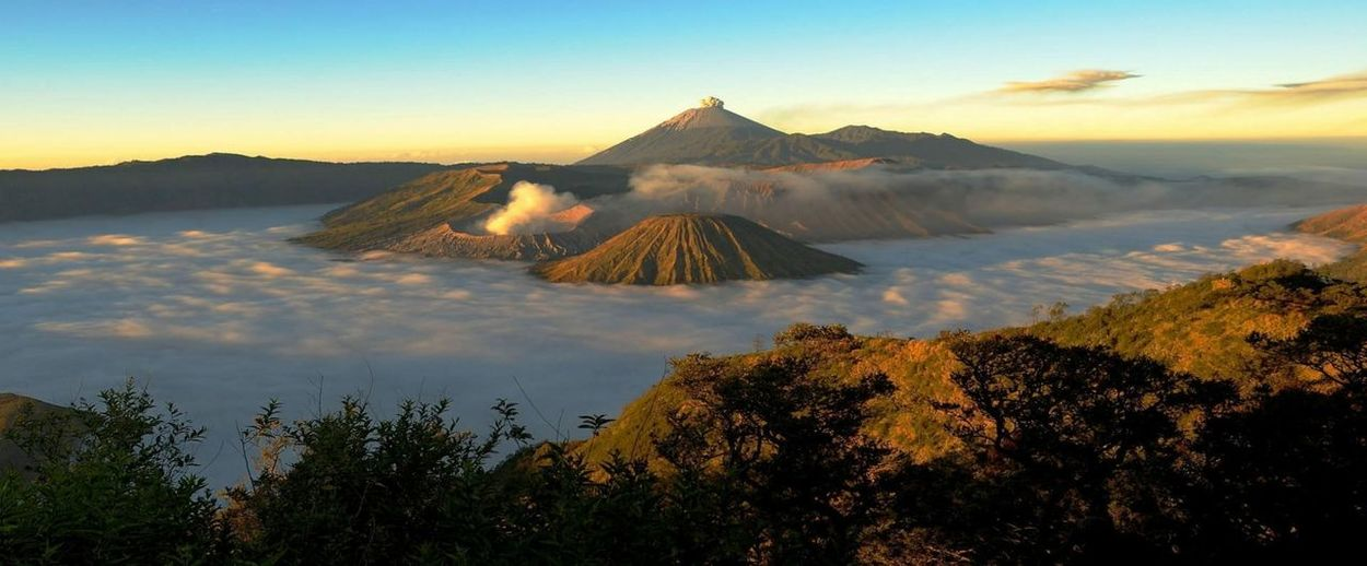 MT Bromo | Indonesia Tree Mountain City Dawn Fog Arrival Mountain Peak Ancient Civilization Volcanic Landscape History Stay Out My Best Photo
